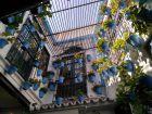 Wewnętrzny ogród w winiarni El Pimpi w Maladze