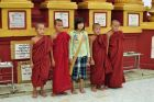 Mali mnisi