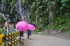 Różowe parasolki