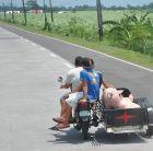 Moto riksza i świnki