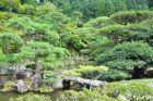 Kioro - ogrody