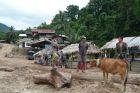 Nad Mekongiem