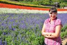 Japonia, Hokkaido, Ania na farmie Tomita