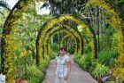 2014, Singapur, Ania w ogrodzie storczyków