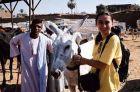 2003, Egipt, Ania na targu zwierzat w Daraw