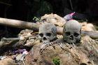 Londa - ludzkie czaszki